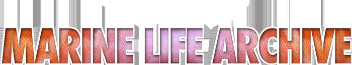 TMLA icon