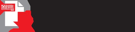 DLC iconB